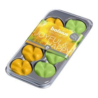 Bolsius Wax Melts Mixpack 8er Pack