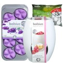 Starterset Wax Melts Ellipse 8er Pack Französischer...