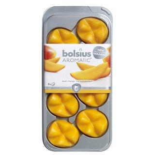 Exotische Mango